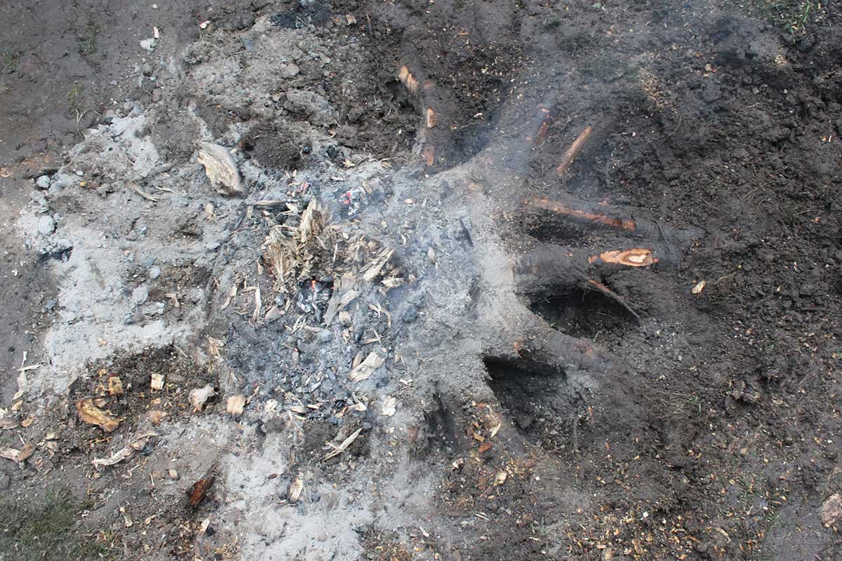 Referensstubbe 5 Stor stubbe med ytliga rötter som eldas upp i två omgångar Vad som brunnit upp i omgång 1