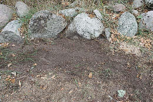 Ta bort stubbar själv. Stubben är borttagen med en Stubbskorsten och hålet är täckt med jord och gräsfrön